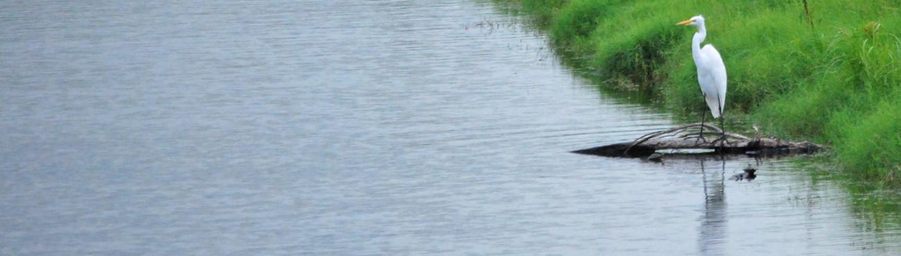 houston Waterway